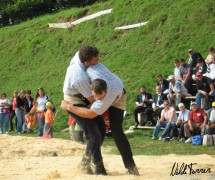 bachtelschwinget_2007-05